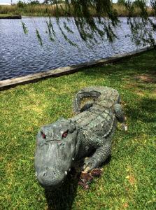 faux alligator, dulac, LA